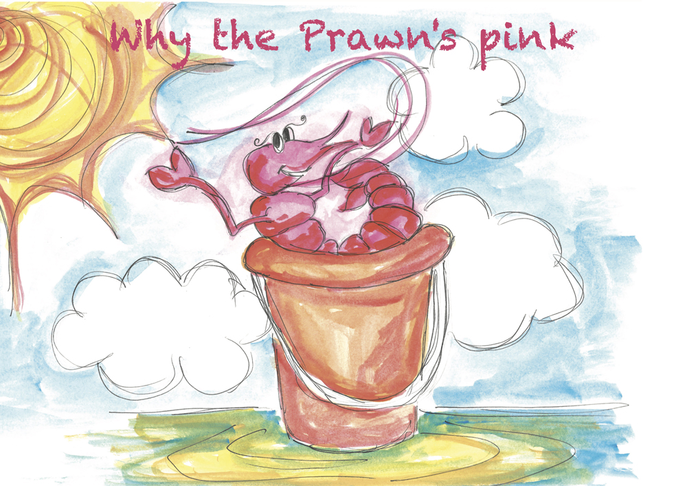 Why the Prawn's pink - Bonnie Friend - book cover